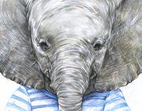 当世界年纪小的时候——小象