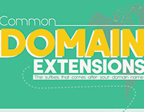 Common Domain Extensions