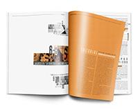 Suplemento Revista