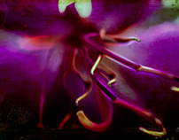 Glow Stamen