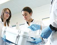 Sterilux - Sterilization solution