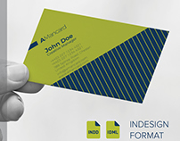 Business Card - modern design