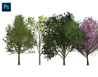 How to create trees in Photoshop