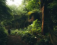 Ruins 10 / abandoned / Abandoned mine