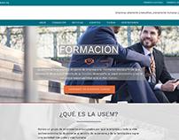 Proyecto USEMM/Desarrollo Web