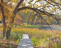 Lake Marion Landscape
