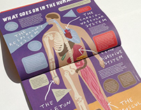 Scoop Mag - Human Body Systems