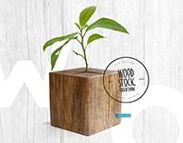 Wood Stock Création v2