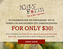 City Farm Email Blast