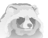"""Illustration """"Marderhund"""" und """"Waschbär"""""""