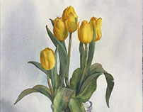 Yellow tulips watercolour