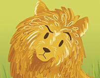 Pepper the Pomeranian