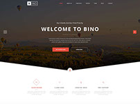 Responsive Bino Web Template