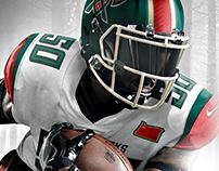 47 Magnificent American Football Team Logos / Branding