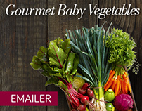 Baby Vegetables // Checkers Emailer 2015