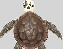 Turtle (Illustration)