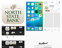 Caddell Communications—App Icons & Launch Pages for NSB