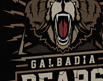 Galbadia Bears poster