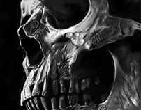 Realistic contrasting skull