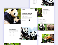 Panda-Landing Page Idea Exploration