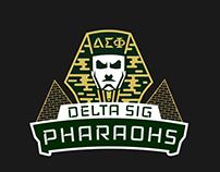 Intramural Shirt - Delta Sig