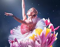 Ballet / Desktopography 2017