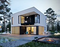 Modern single-family house 5