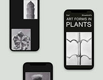 Karl Blossfeldt's Art Forms in Plants Editorial