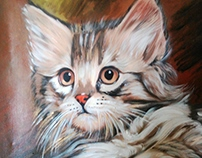 "cat "" acrylic on canvas 50X50 cm"
