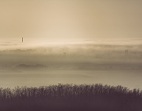 Fog in the landscape