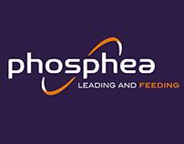 PHOSPHEA, strategy, naming, global branding