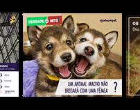Ajude Um Pet - ONG