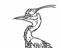Egret Line Art