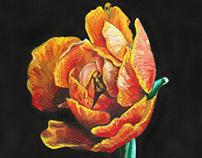 050315_Flower