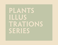 Some Plants | Illustration