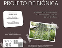 Projeto Biônica