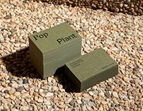 Pop Plant