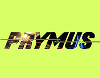 Prymus Engineering Branding