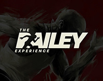 The Bailey Experience - Key Art & Materials