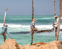 Stilt Fishing, Stilt Fishermen!