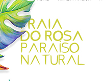 Virada Mágica - Praia do Rosa