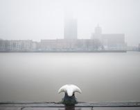 Misty Rotterdam