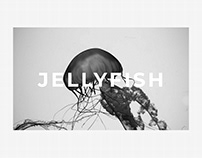 Landing Page for Jellyfish Museum