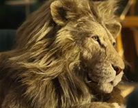 IKEA - Lion Man