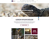 Enso Evolutions - Drupal Template and Content Concepts