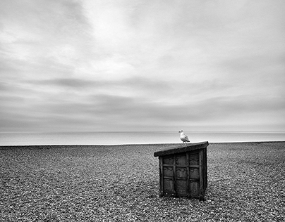 BRIGHTON BEACH – Lonely winter days.