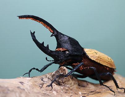 Hercules Beetle Paper Sculpture