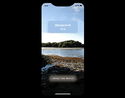 Mangrove UCA type: iPhone X/wireframe Design