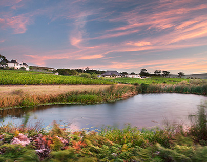 Bouchard Finlayson Wine Estate