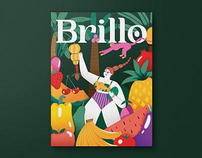 Brillo Magazine